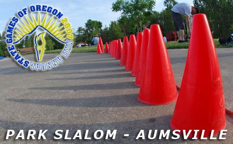 Park Slalom Banner