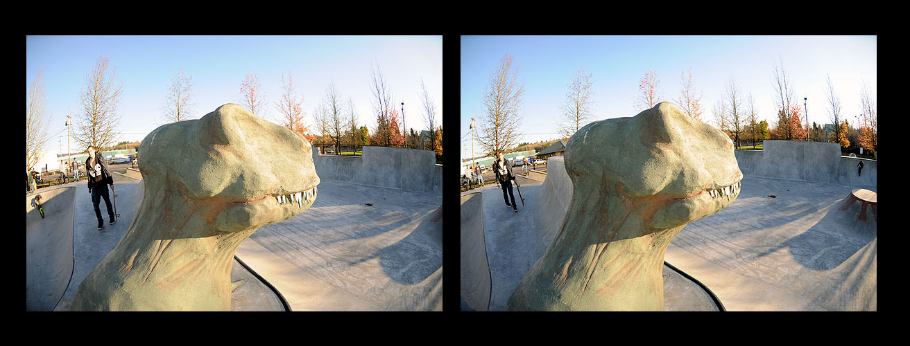 Tigard: T-Rex another angle looking northeast
